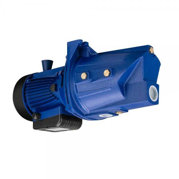 Daikin DVSB-2V-20 Single Stage Vane Pump #1 image